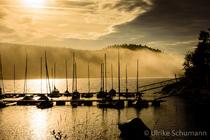 Goldener Schluchsee